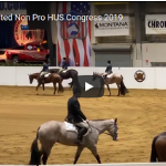 Congress 2019 3YO Limited Non Pro HUS